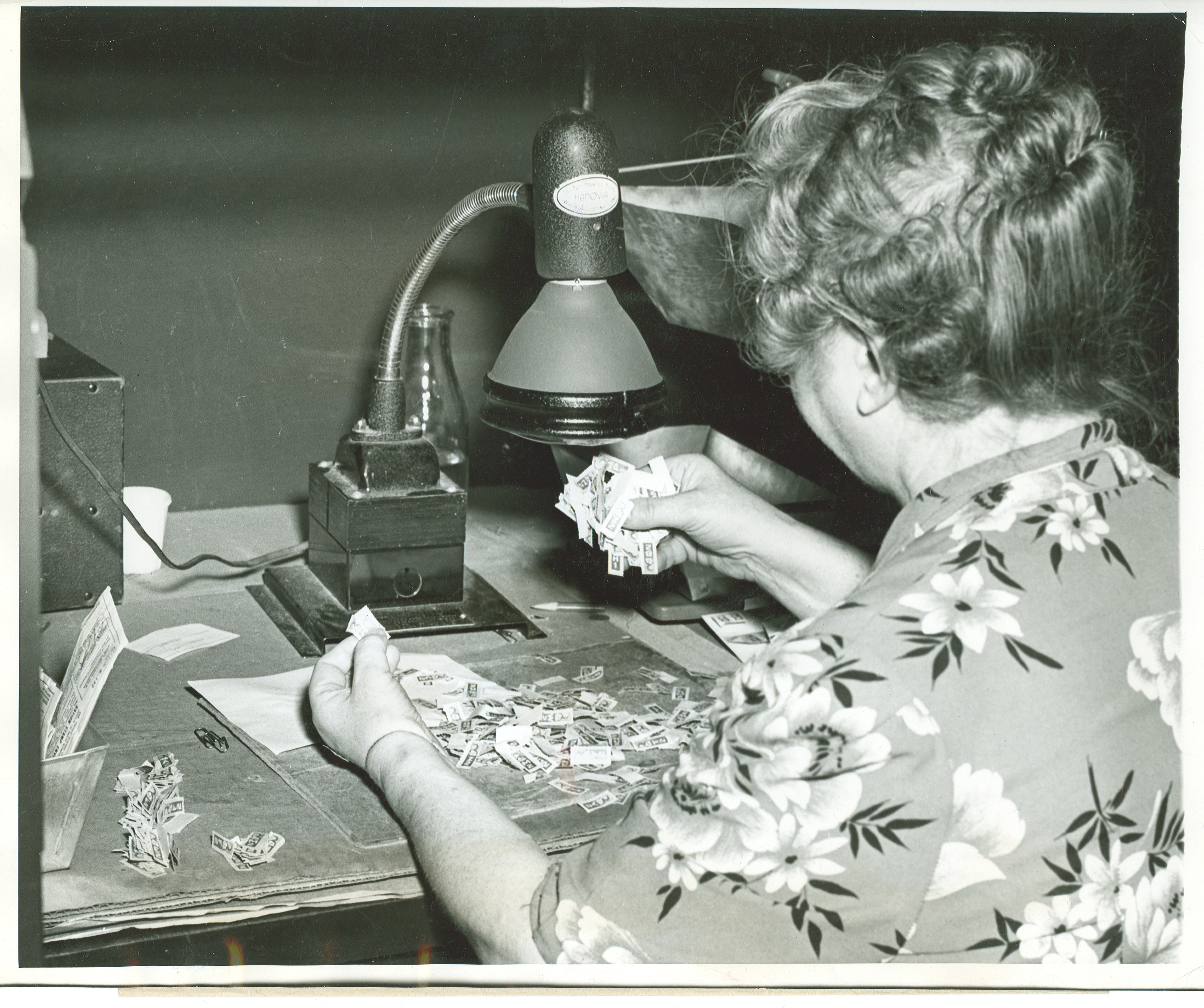 Chicago OPA worker checking the authenticity of ration stamps under ultraviolet light