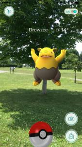Screen captures of Pokemon Go characters Drowzee, Pidgey, and Pidgeotto